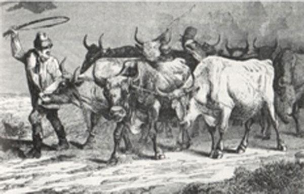 Illustreret-Tidende-1867